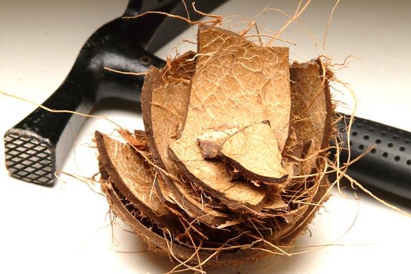 Kako očistiti kokos