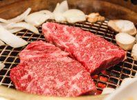 Vagi govedina