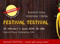 Festival testa